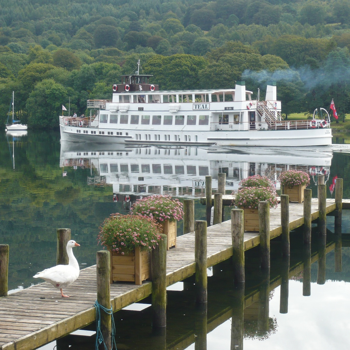 Windermere Lake Cruises - sq