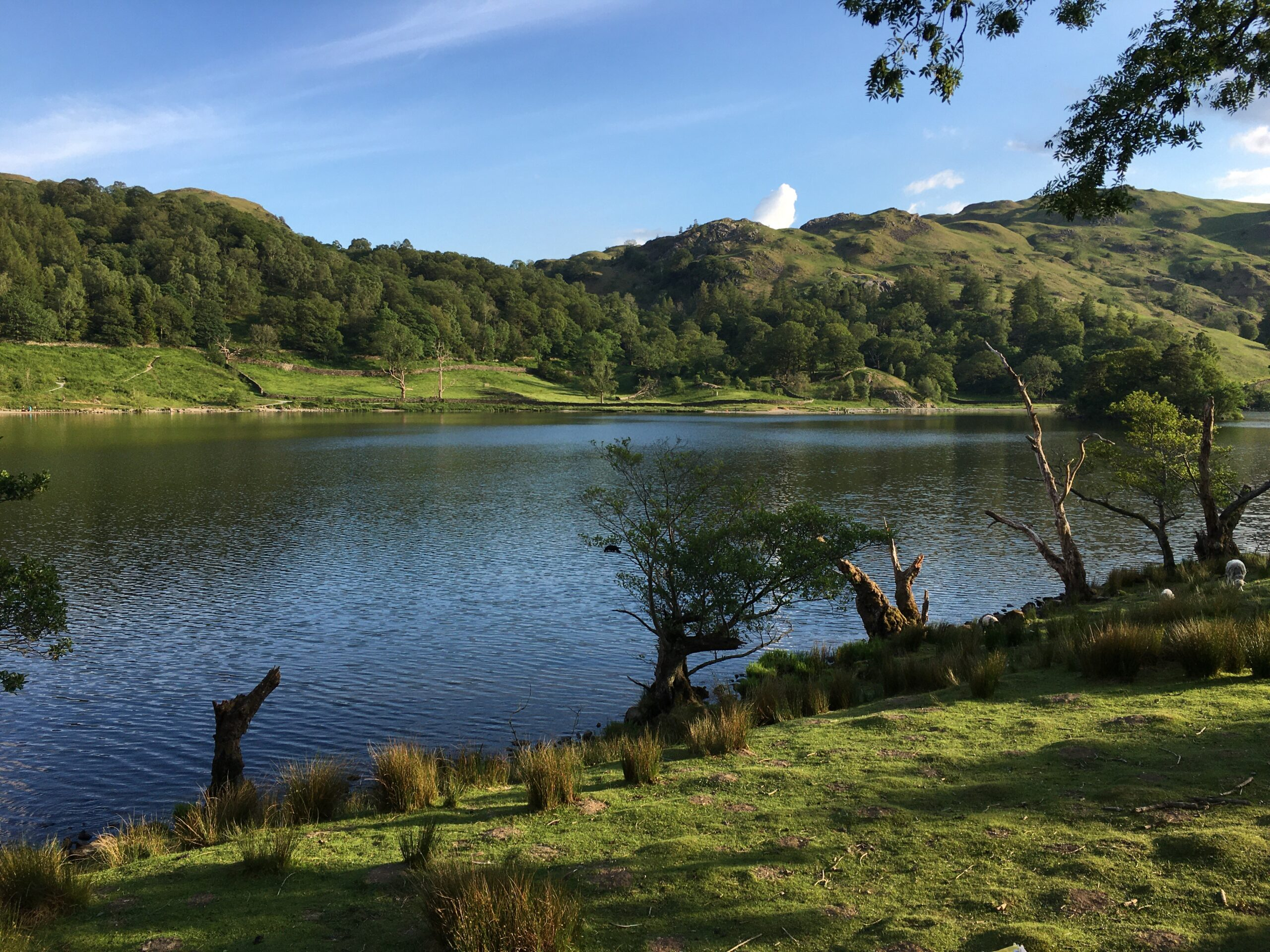 Rydal Water in Lake District